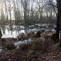 Canal d'Ille-et-Rance-040