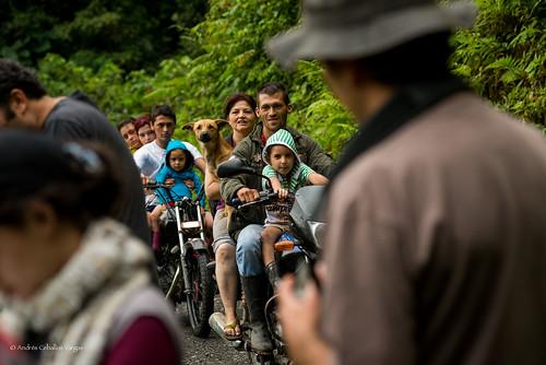 people dog nature birds colombia gente wildlife birding perro transportation transporte risaralda mistrato andrescv
