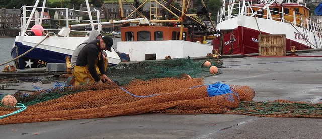 Campbeltown Harbour - Tending Fishing Nets