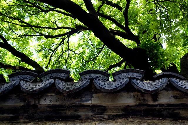 2015 0520 上海豫園 (6)
