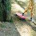 skate girl 2 by Ta