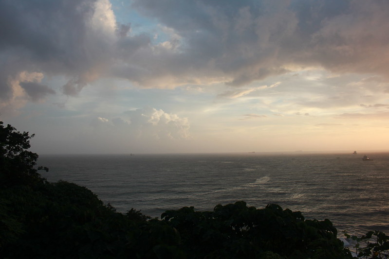 環島-西子灣-夕陽與猴子共舞 (27)