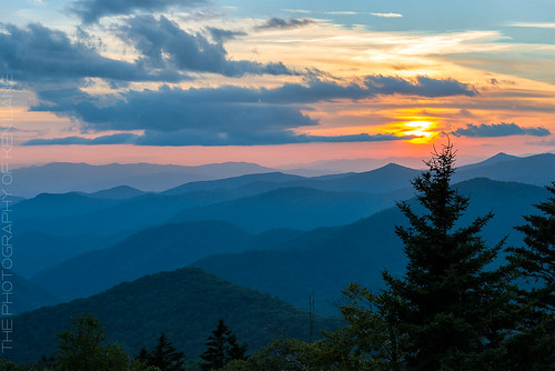 sunset summer sky usa sun mountain mountains tree nature beauty pinetree clouds forest landscape geotagged outside outdoors evening flora nikon unitedstates outdoor hill northcarolina nationalforest serene appalachian wilderness overlook ridgeline appalachia blueridgemountains blueridgeparkway blueridge appalachianmountains wnc caneyfork pisgahnationalforest brp westernnc westernnorthcarolina landscapephotography cullowhee mountainridge richmountain mountainridges pnf mountainlayers caneyforkoverlook nikond800 appalachiansunset geo:lat=3532754697 geo:lon=8296534896