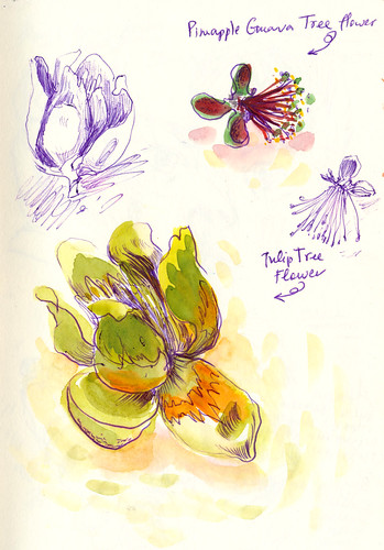 Sketchbook #90 - Treasures