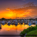 Loggerhead Marina Palm Beach Gardens Sunrise by Captain Kimo
