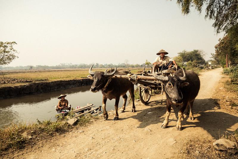 Myanmar #029