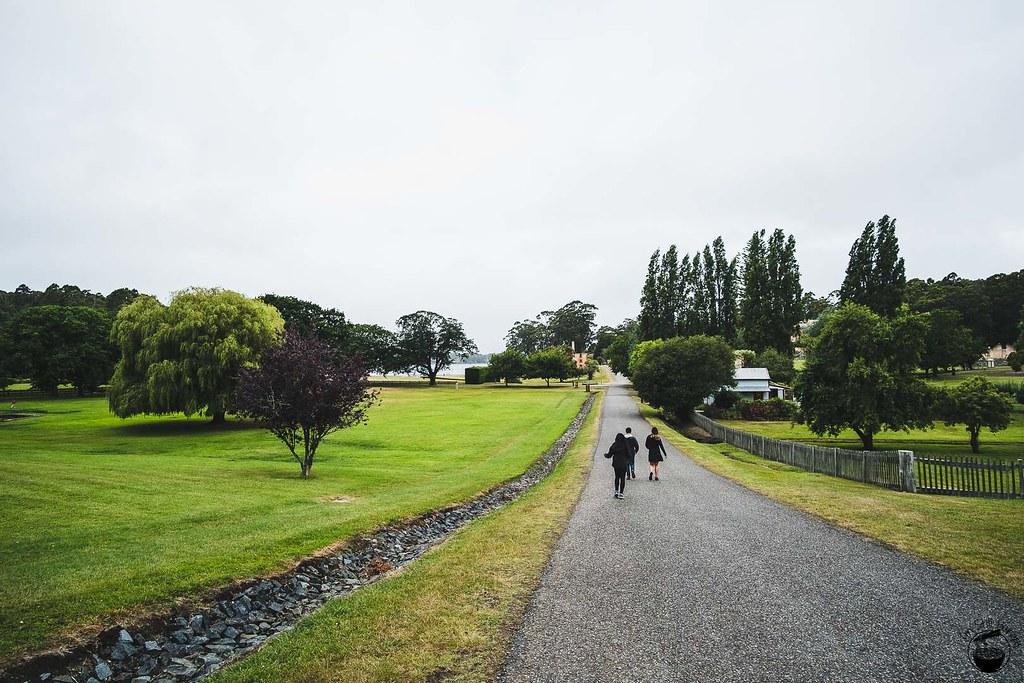 Tasmania 2016-221