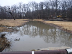 Dewey's Creek stream restoration. Credit: USFWS