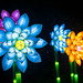 Lighted Flowers 2 by GDY2000