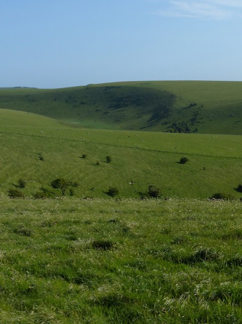 View of the downs (section three anticlockwise)