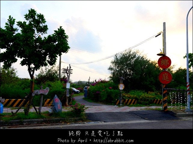 DSC_8357