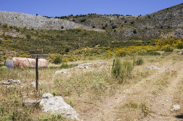 4. Hike