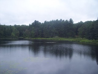 Dayville Pond