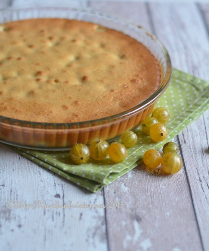 ©Stachelbeer-Clafoutis (1)