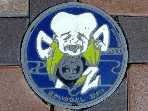 Sakaiminato Tottori, manhole cover 7 (鳥取県境港市のマンホール7)