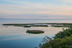 Wetlands at Dusk