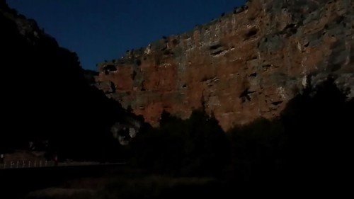 Buitres en el cañón del Mesa