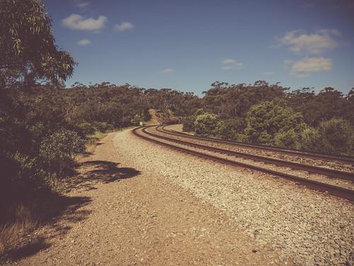 adelaide southaustralia sa australia rail railway rails walk view photo photography edit lightroom effect vintage retro olympusem10 olympus olympusomd