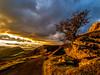 Panorama Light Explosion