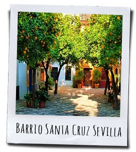 Sinaasappelbomen in de Barrio de Santa Cruz in Sevilla