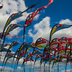 Kite Flags at Basingstoke Kite Festival