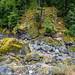 Dry Riverbed - Skagit River