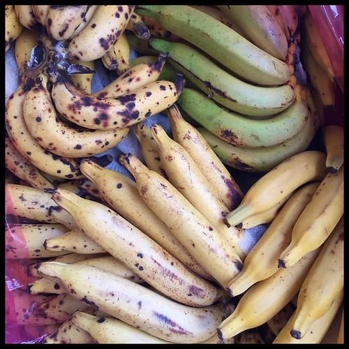 Bananarama. #Taiwan #Nantou #Caotun #fruit #banana #台灣 #南投 #草屯
