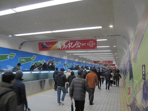 中山競馬場の地下通路
