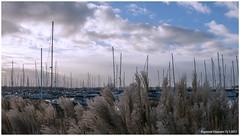 Jachthaven Marina Muiderzand Almere