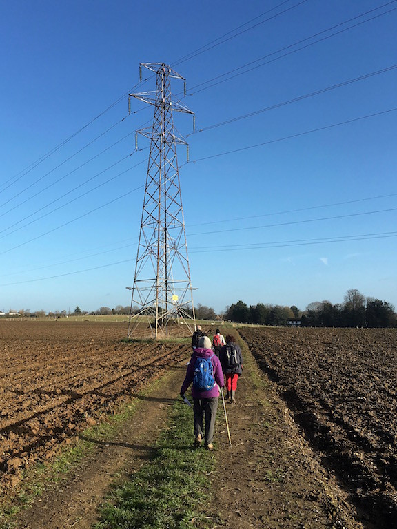 Arable field and pylon Farningham to Sole Street walk