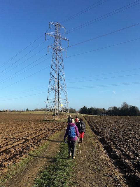 Arable field and pylon