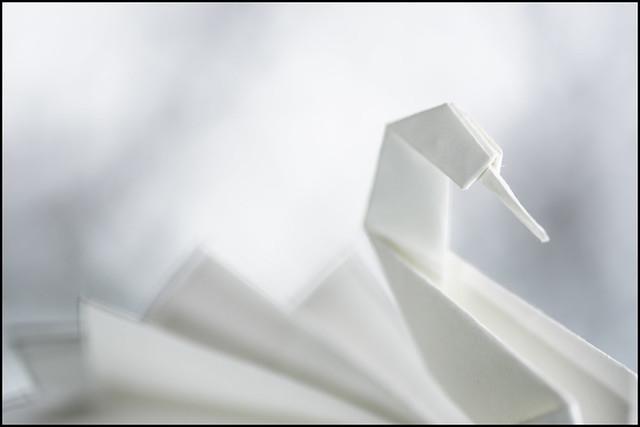 Macro Mondays - Just White Paper - Origami Swan