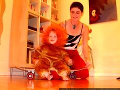scary lion on a skateboard   dscf6867