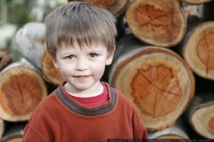 nick at the wood pile