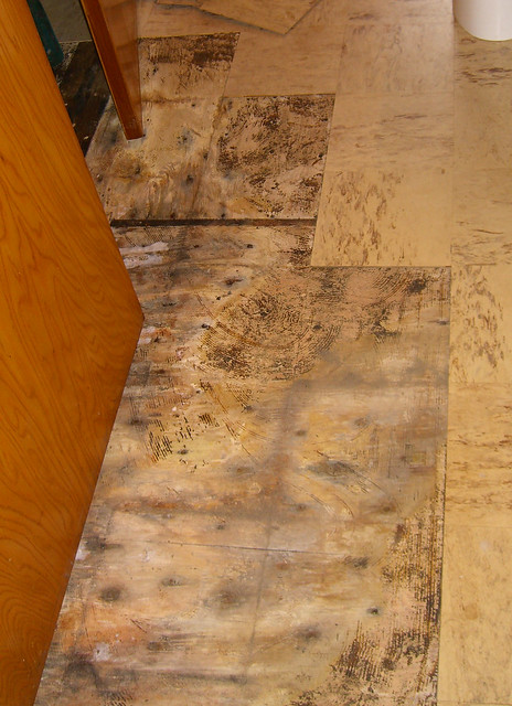 Dry rot in the bathroom