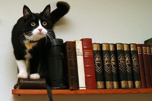 Matching the books