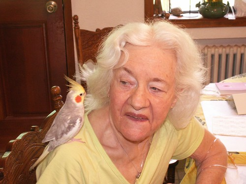 Great Grandma Webster and auntie Rebecca's bird