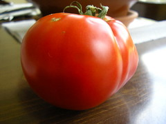 home grown tomato