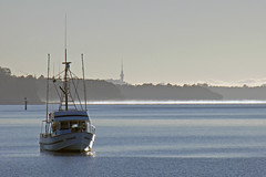 Auckland Skytower from Cornwallis Wharf, Manukau Harbour, New Zealand, 27 June 2006