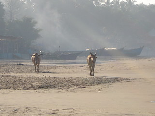 Once upon a time on Arambol Beach