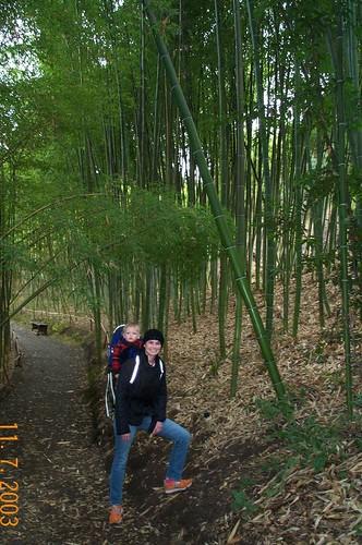 Rach n Nick timber bamboo 11 7 2003