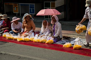 500 Dhutanga Monk Procession-9