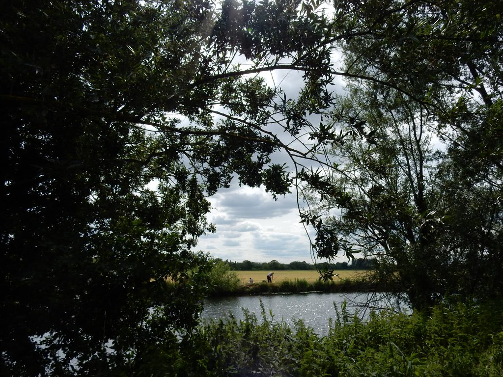 View from Holt Island Huntingdon Circular (long)