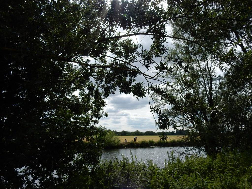 View from Holt Island Huntingdon Circular (long)