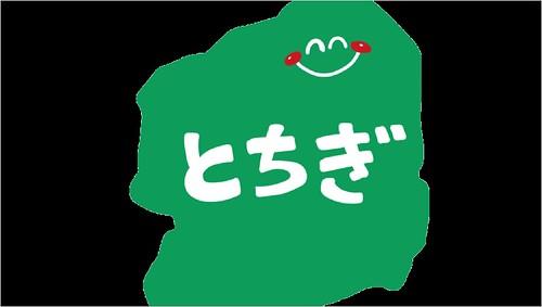 脱毛サロン 医療脱毛 栃木県