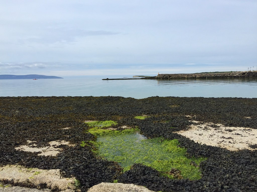 Galway Bay, very calm