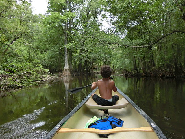 Canoeing Down the Hillsborough River
