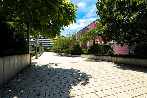 Follow the yellow brick road...?