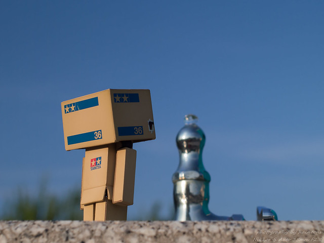 July/11 danbo