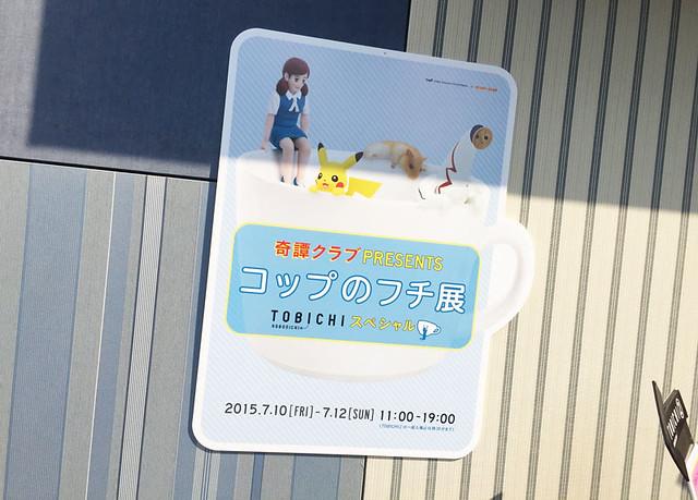 toomilog-fuchikotobichi002